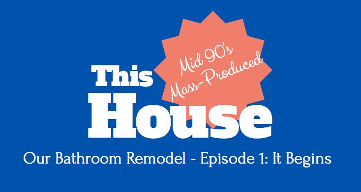 Our Bathroom Remodel - Episode 1 - It Begins!