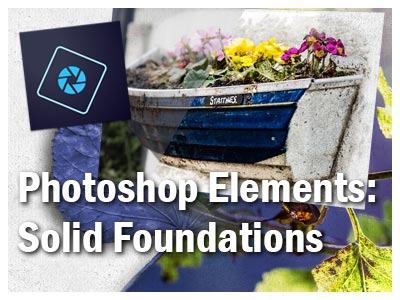 go to the PS Elements Foundations course