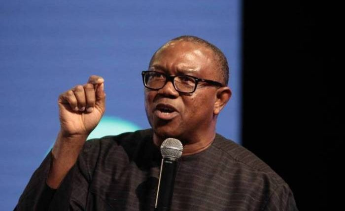 Image result for Why Nigeria may face crisis – Peter Obi