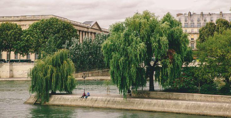 Square_du_Vert-Galant,_Paris_September_2013