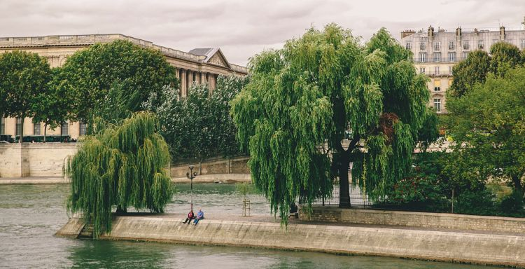 Square_du_Vert-Galant,_Paris_September_2013