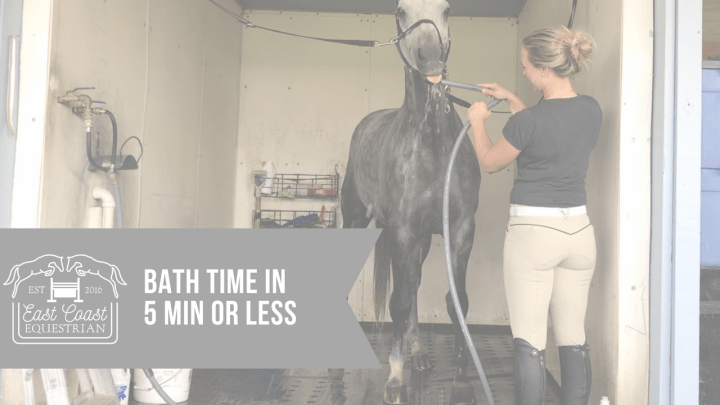 Bath Time & Grooming – Express 101
