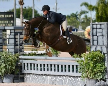 30/01/2019 ; Wellington FL ; Winter Equestrian Festival - Week 4