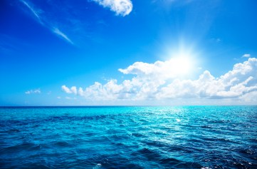 Blue Ocean _ Free All Download Vector