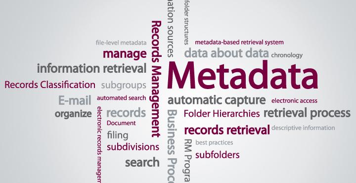 metadata definition