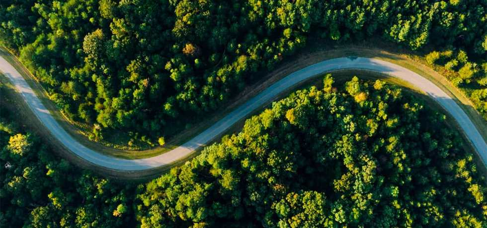 Winding road through forest from above