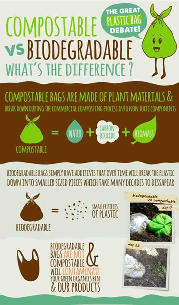 Compostable vs Biodegradable Packaging
