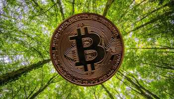 Bitcoin Carbon Footprint- The Future of Online Payments- The Ecobahn