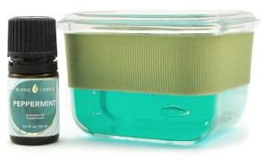 Natural Gel Air Freshener