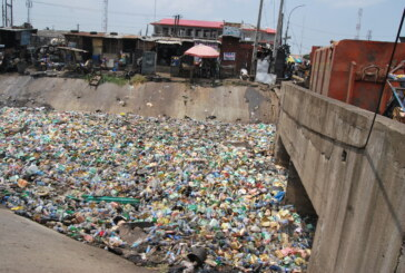 Environmental Pollution.