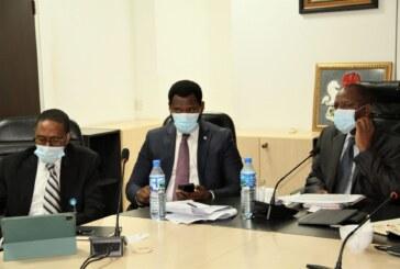 2020 First Capital Market Committee webinar meeting in Abuja.