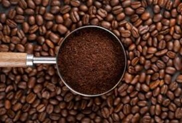 African Governments Urged to Help Boost Coffee Production in the Continent