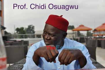 Ohanaeze Ndigbo: Why the Cap Fits Professor Chidi Osuageu