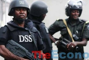 DSS uncovers fresh plot to bomb public places during Christmas