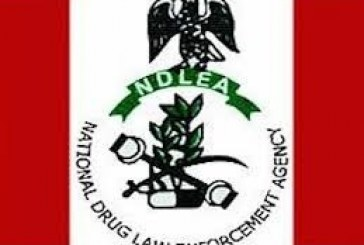 NDLEA arrests 165, seizes 959kg of hard drugs in Imo