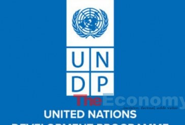 UNDP, FCTA launch unconditional cash transfer