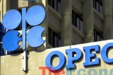 OPEC, non-OPEC countries to increase production by 0.5mb/d