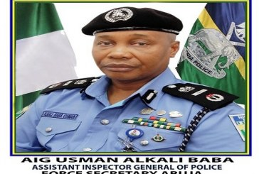 Reason Buhari Appointed Usman Alkali as New Police Chief