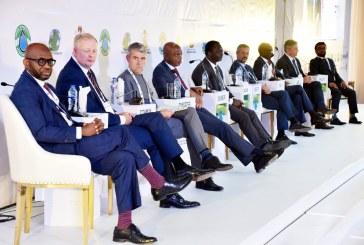 Nigerian International Petroleum Summit