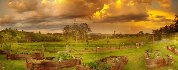 Sunset and a storm at The Edible Forest Permaculture Farm