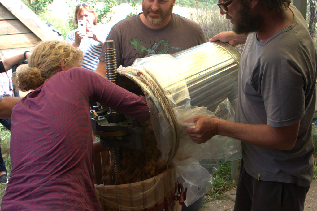 Transferring fruit pulp to the press