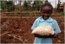 farm africa #givingtuesday nairobi project