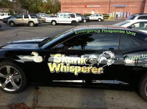 The skunk whisperer car, Unusual cars, www.theeducationaltourist.com