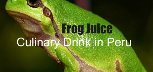 Frog Juice Drink in Peru, www.theeducationaltourist.com