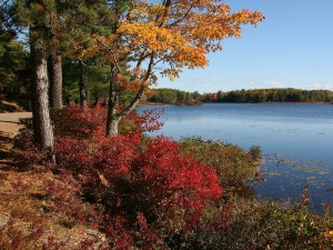colorful fall foliage, Wife Carrying, www.theeducationaltourist.com
