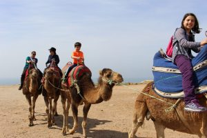 Camel riding caravan with family