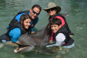 The Educational Tourist family with dolphin, Swim with dolphins, www.theeducationaltourist.com