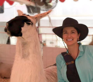 The Educational Tourist and llama, Swim with Dolphins, www.theeducationaltourist.com