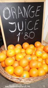 Fresh oranges for juice, www.theeducationaltourist.com