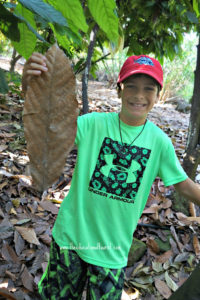 boy holding cocoa leaf, Original Hawaiian Chocolate, www.theeducationaltourist.com