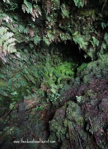 Entrance to Thurston Lava Tube, Hawaii National Park, www.theeducationaltourist.com