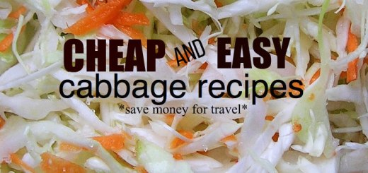 cole slaw, cheap and easy cabbage recipes save money for travel, www.theeducationaltourist.com