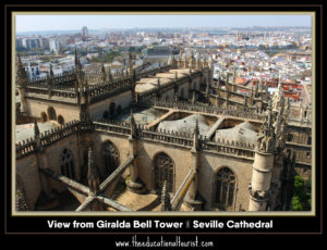view from Giralda Bell Tower - Seville Cathedral