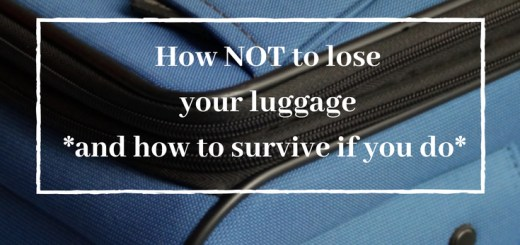 blue suitcase how not to lose your luggage