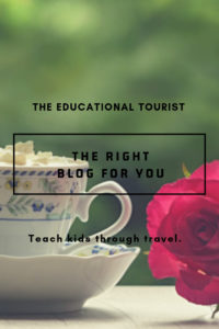 tea cup with rose, the right blog for you