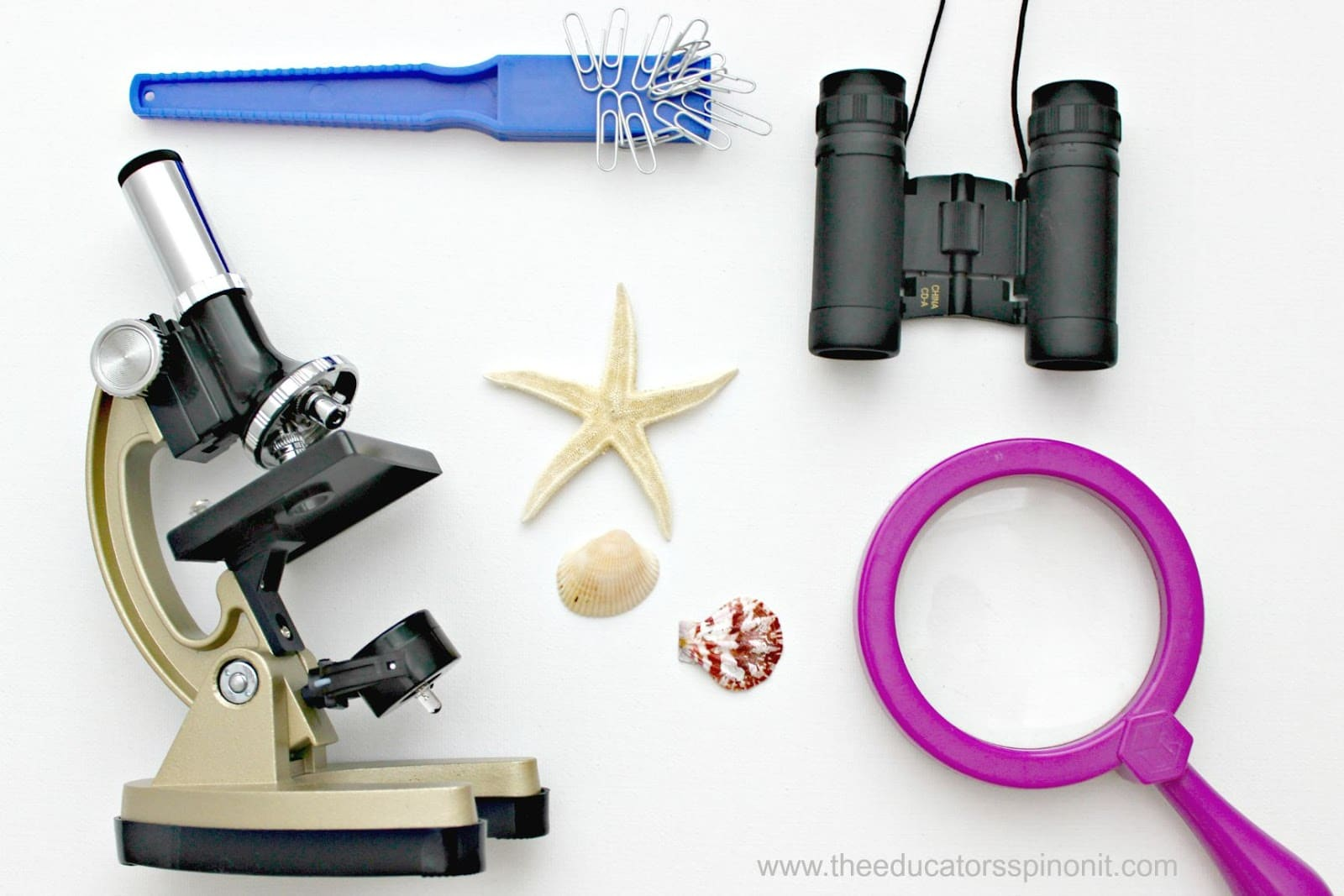 Preschool Science Activities For Stem Enrichment Steam
