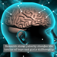 Research shows puberty changes the brains of boys and girls differently