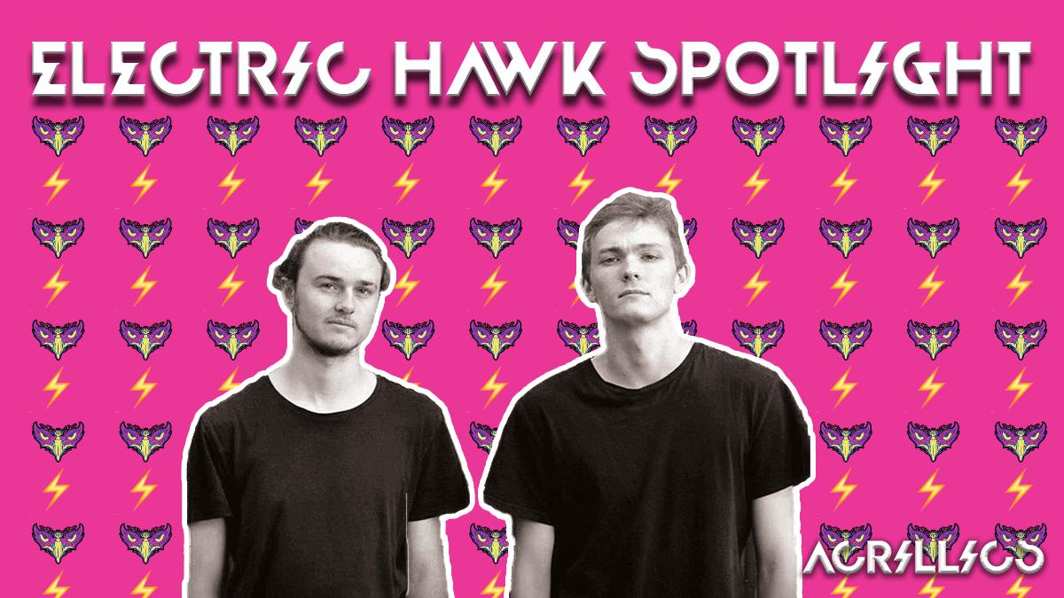 Acrillics Electric Hawk Spotlight