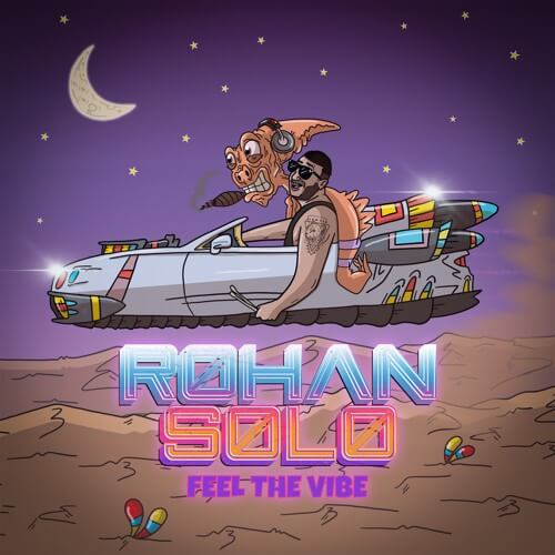 rohan solo feel the vibe