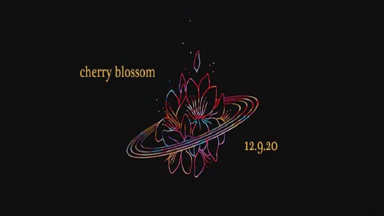slenderbodies-cherry-blossom-electric-hawk