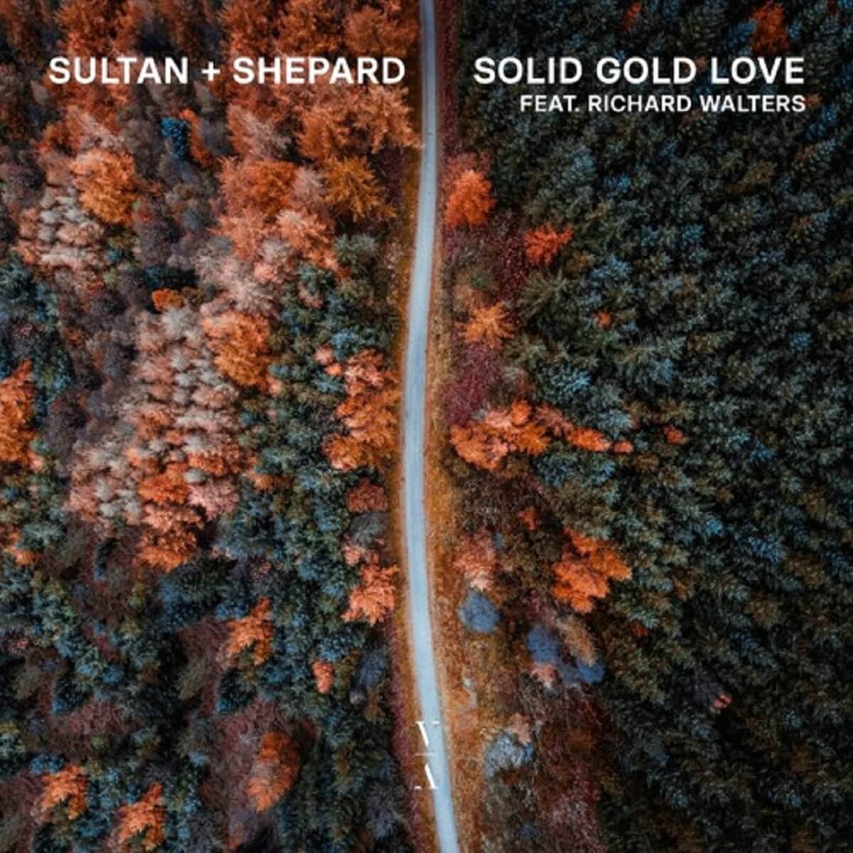 Sultan + Shepard Electric Hawk
