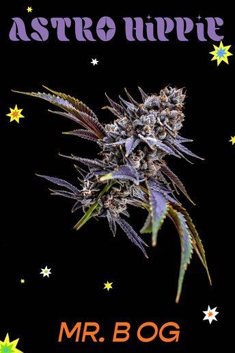 GRiZ Cannabis Lines