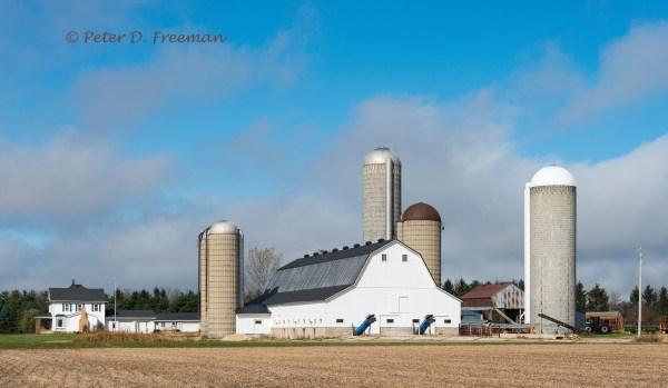 Gleaming Farm
