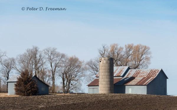 Grey Farm