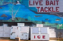 Live Bait Tackle