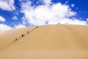 Sand surfing (Te Paki Stream)
